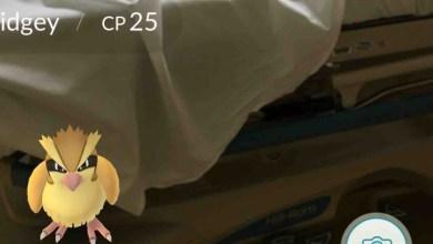 Jogador captura Pokémon Pidgey durante trabalho de parto da esposa - Index