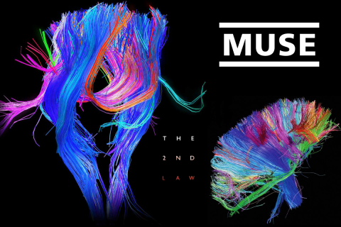Muse – Save Me – Music Highlight Rewind