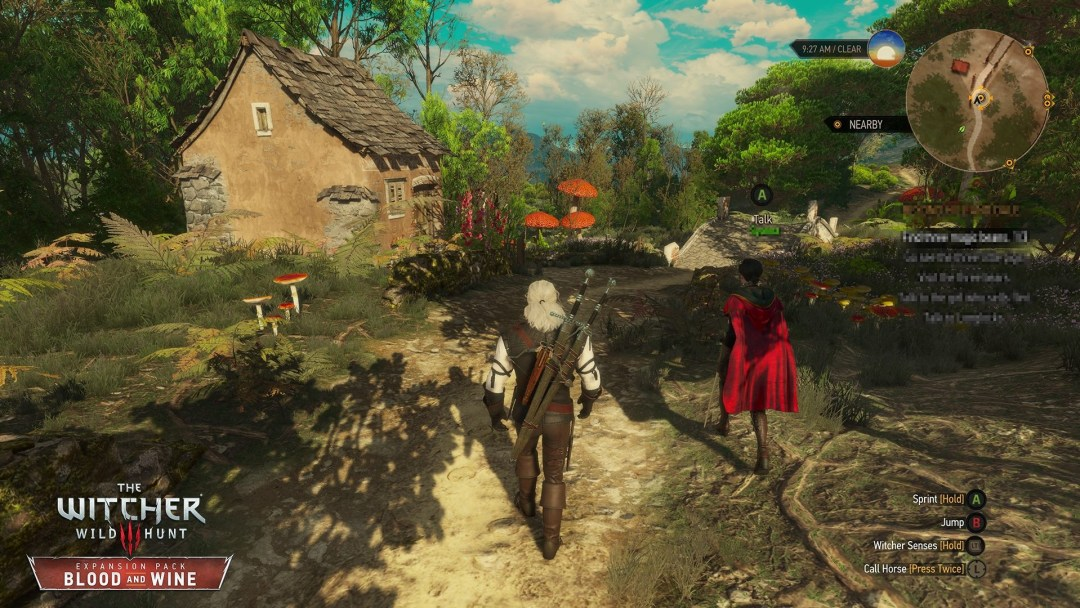 The-Witcher-3-03