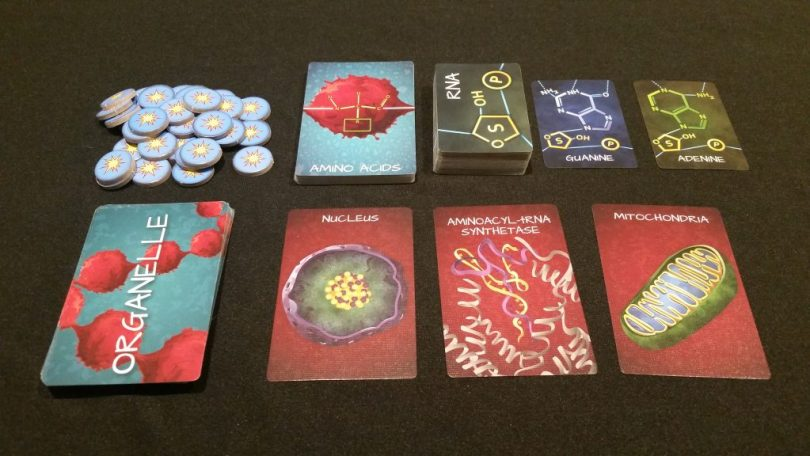 The basic setup - ATP pile, Amino Acid draw deck, RNA cards, and Organelles. Now let's get to translating!