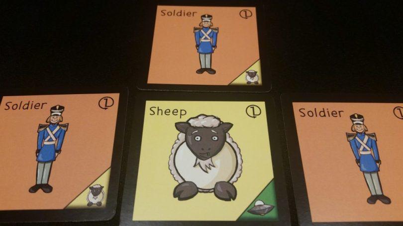 Nervous sheep is nervous...