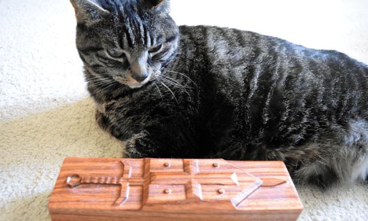 peanut cat dog might box dragon sheath