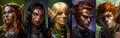 Orlan Official Pillars Of Eternity Wiki