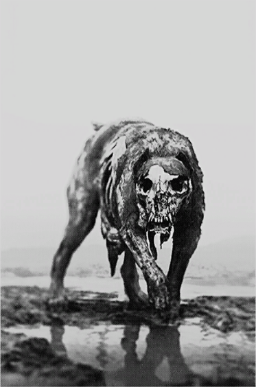Hellhound Official Hunt Showdown Wiki