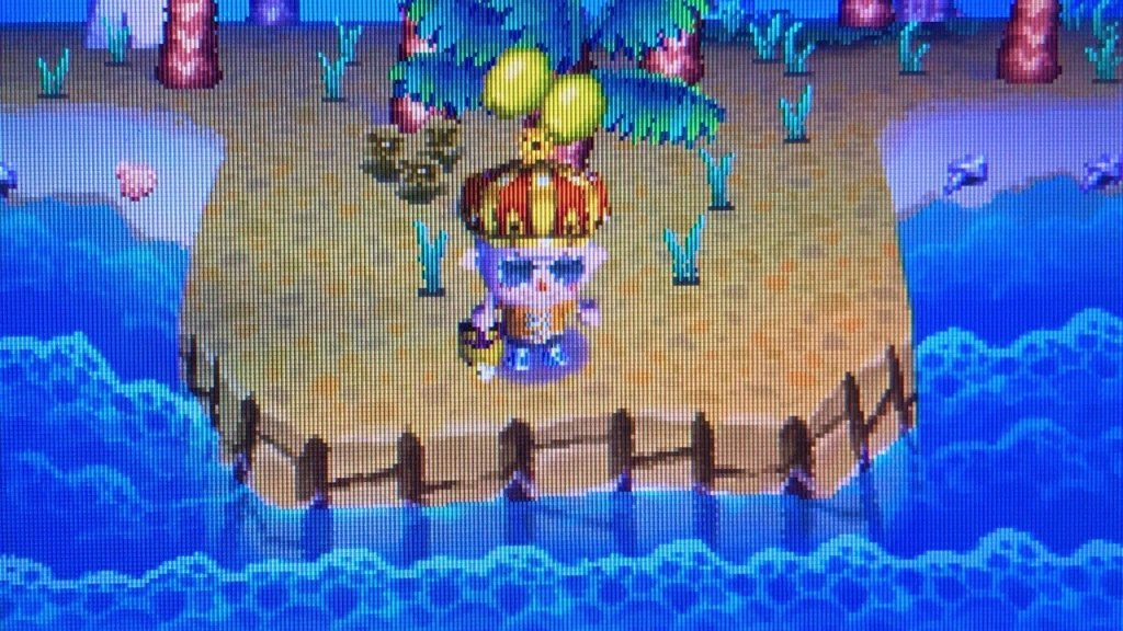 10 Years Later, We Return To Our Abandoned Animal Crossing: Wild World Village - Feature