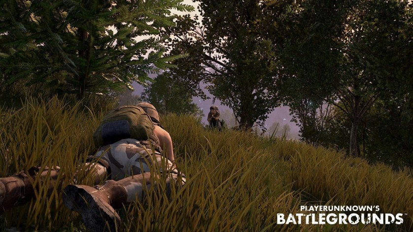 PlayerUnknown's Battleground, PlayerUnknown's Battleground Release, Bluehole Studio, Brendan Greene