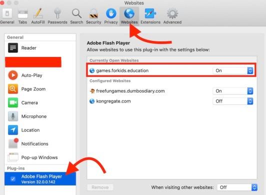 enable flash on safari