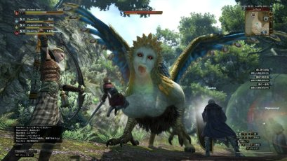 dragons-dogma-online_150409 (2)