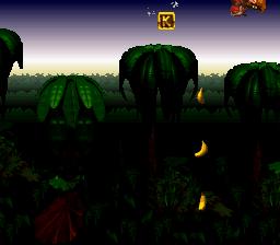 Donkey Kong Country_00021