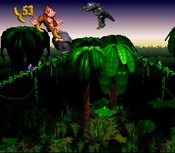 Donkey Kong Country_00071