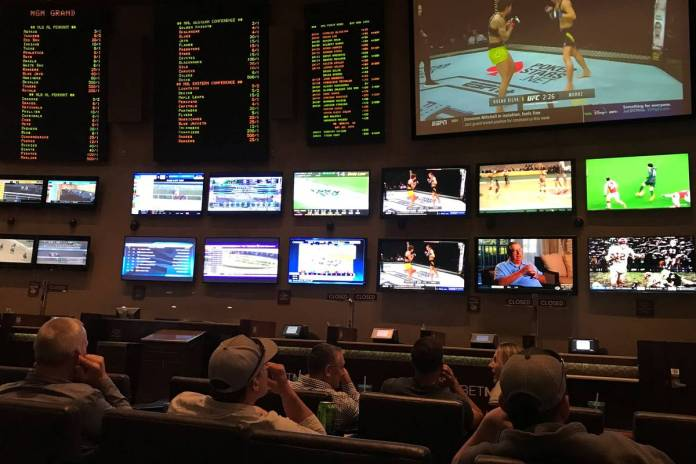 Gradual Re-Introduction of Professional Sports is a Boon for the Betting Industry