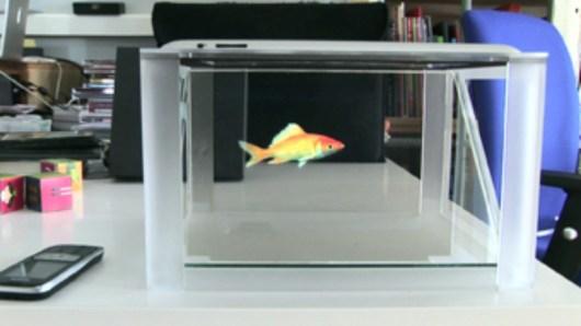 Dieser Fisch muss nie gefüttert werden (Foto: i-Lusio.com)
