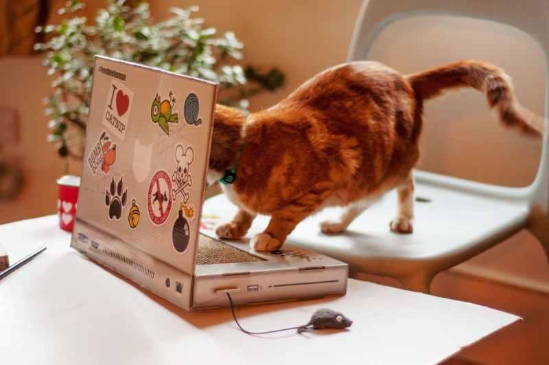 Besser, als mit einem richtigen Laptop zu spielen. (Foto: Suck UK)