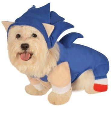 Euer Hund als Sonic? (Foto: Funidelia)