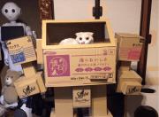 DIY-Mech: Papp-Roboter für Katzen