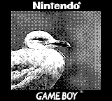Das schafft die Gameboy Camera dank des Objektivs. (Foto: Bastiaan Ekeler)