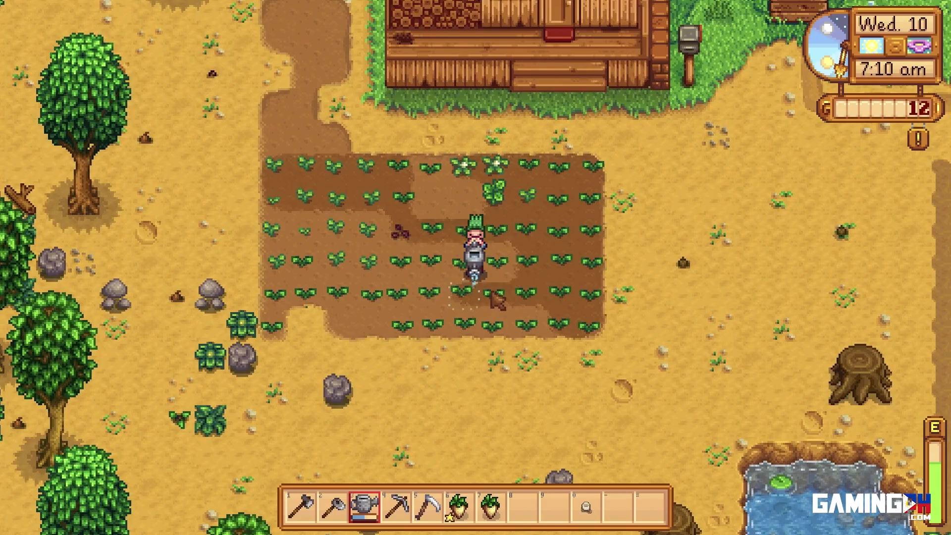 How to Refill Watering Can in Stardew Valley (Switch, Steam, GOG