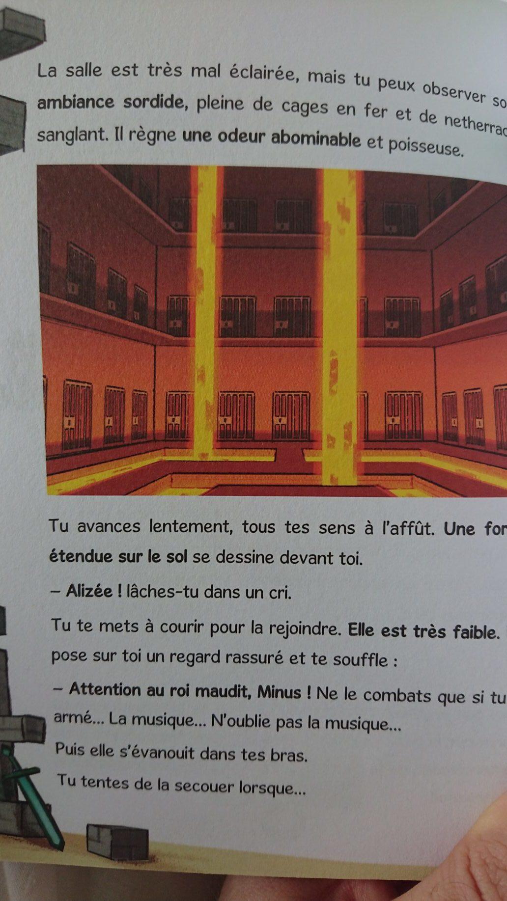 187 Livre Journal D Un Noob Le M 233 Ga Temple Maudit