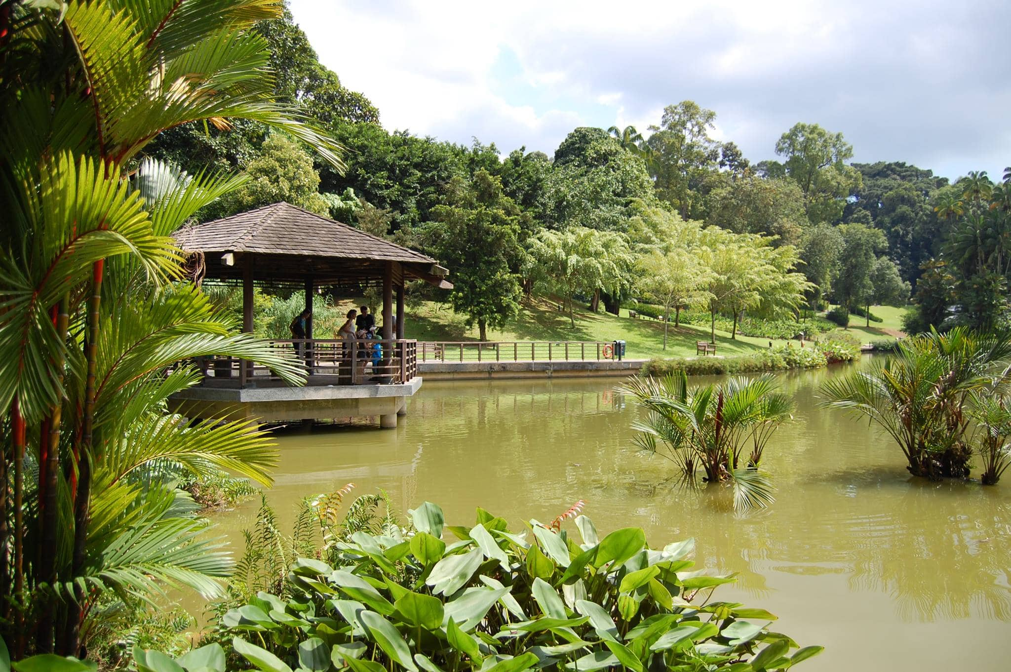 Travel Singapore. Botanic Gardens