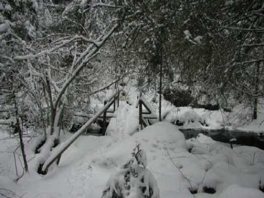 Fiby bron jan 2002