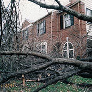 storm_damage_2