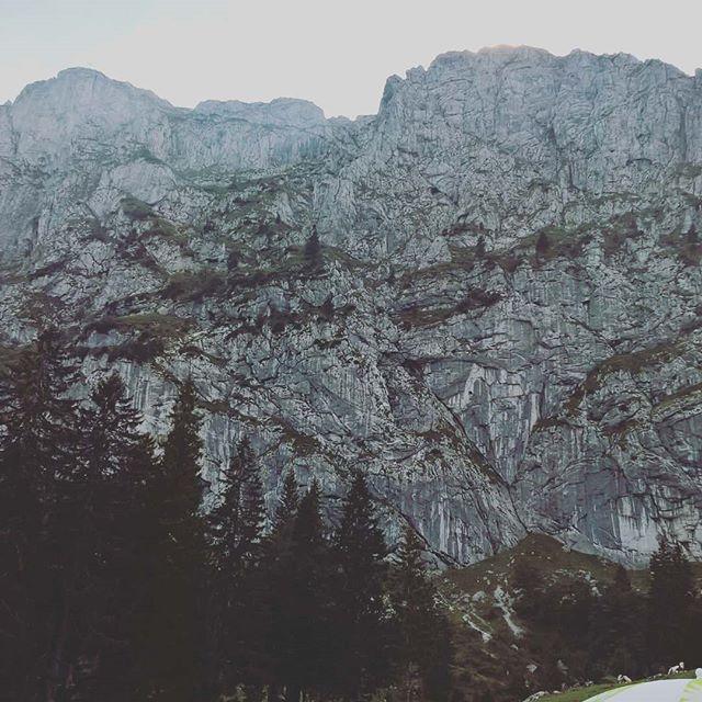 Instagramnews... #benediktenwand #wandern