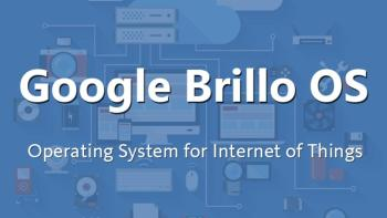 google-brillo