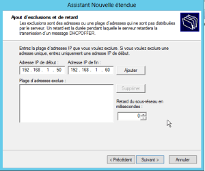 Adresse DHCP d'exclusion
