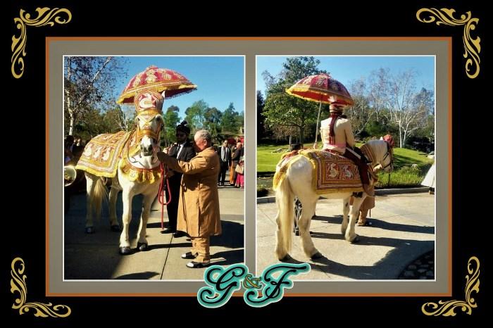 G&F East Indian Baraat Weddings