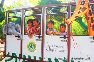 bali-safari-and-marine-park