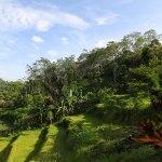 view villa bali camp3