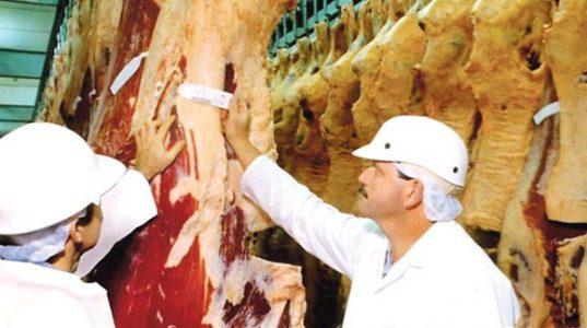 Carne-fraca-Pol%C3%ADcia-Federal-v%C3%AA-descumprimento-de-normas-da-Agricultura-em-exporta%C3%A7%C3%A3o-para-China-em-grampo-e1490796054318 PIB da Bahia cresce 1,3% no segundo trimestre de 2019