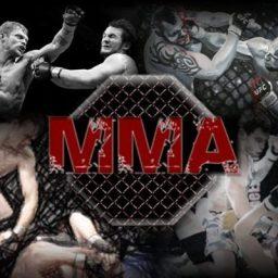 Organização de MMA inova e promete salário mensal aos lutadores
