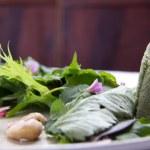 Alimentos orgânicos e produtos da agricultura familiar conquistam cardápios de restaurantes