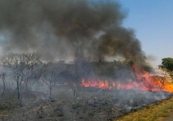 Governo-quer-R-1-bilh%C3%A3o-de-fundo-da-Petrobras-para-combater-queimadas Governo quer R$ 1 bilhão de fundo da Petrobras para combater queimadas
