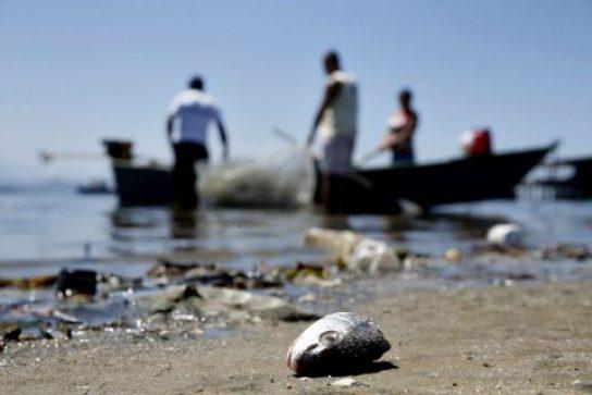 Praias-baianas-atingidas-por-%C3%B3leo-registram-redu%C3%A7%C3%A3o-de-47-de-esp%C3%A9cies-marinhas-diz-Ufba Praias baianas atingidas por óleo registram redução de 47% de espécies marinhas, diz Ufba