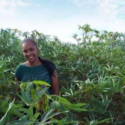 A Bahia é o estado com maior número de produtoras rurais no País, diz IBGE