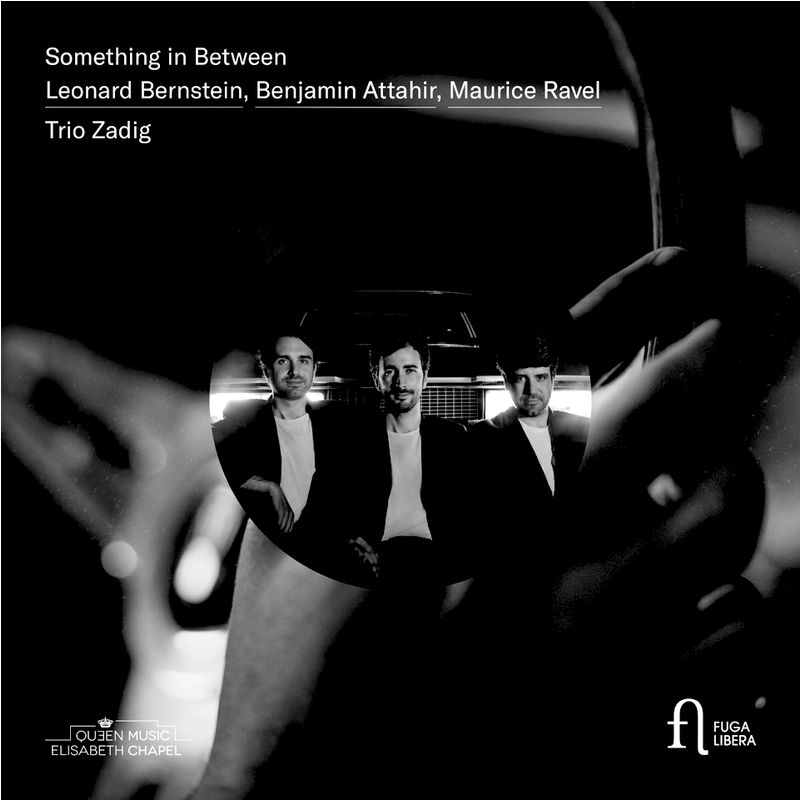 Trio Zadig : Something in Between