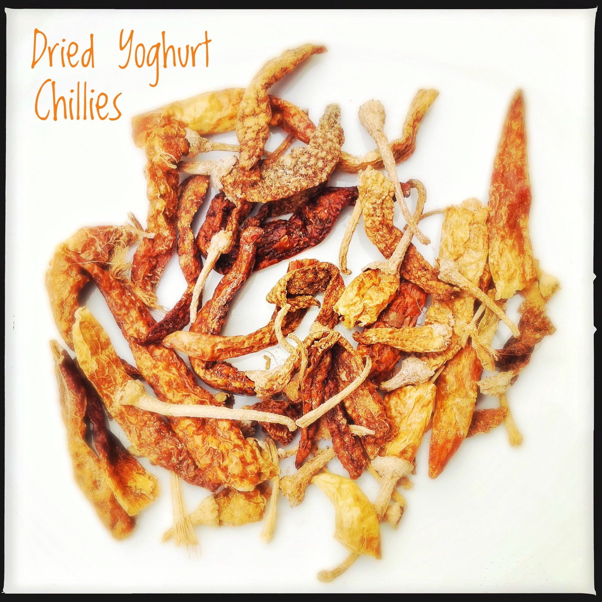 Spices: Dried Curd/Yoghurt Chillies of Kerala