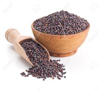 24187290-black-mustard-seeds-isolated-on-white-stock-photo-seed