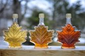 bottles-canadian-maple-syrup.jpg.838x0_q80