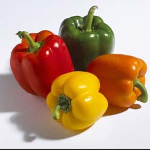 Green-Pepper-for-sale