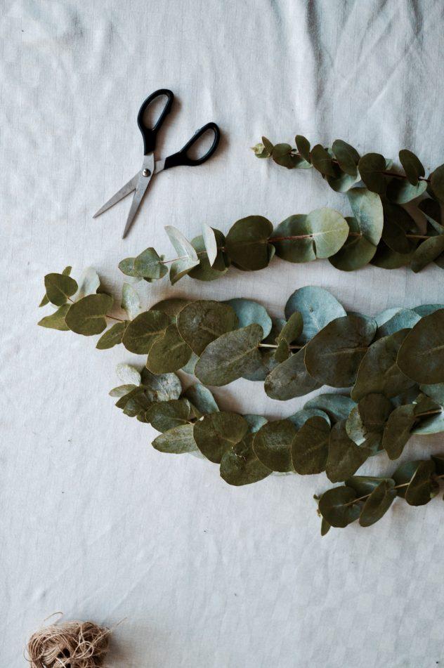 DIY eucalyptus