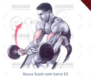 treino-para-biceps