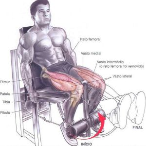 exercícios-para-pernas