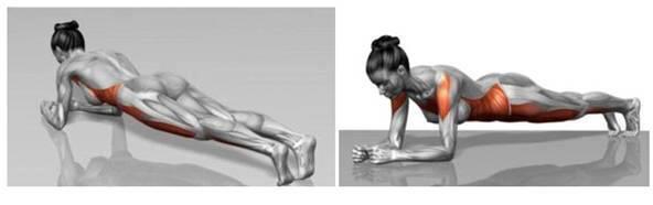 postura-corporal