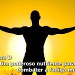 Suplementos de vitamina D: um poderoso nutriente para combater a fadiga muscular