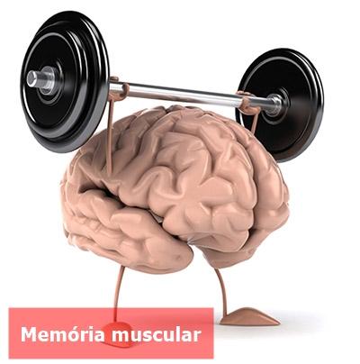 Memória-muscular