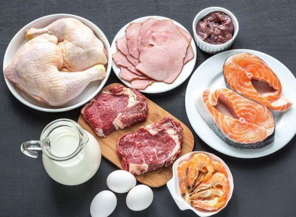 emagrecer comendo proteínas