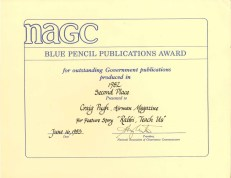 Blue Pencil - Second Place